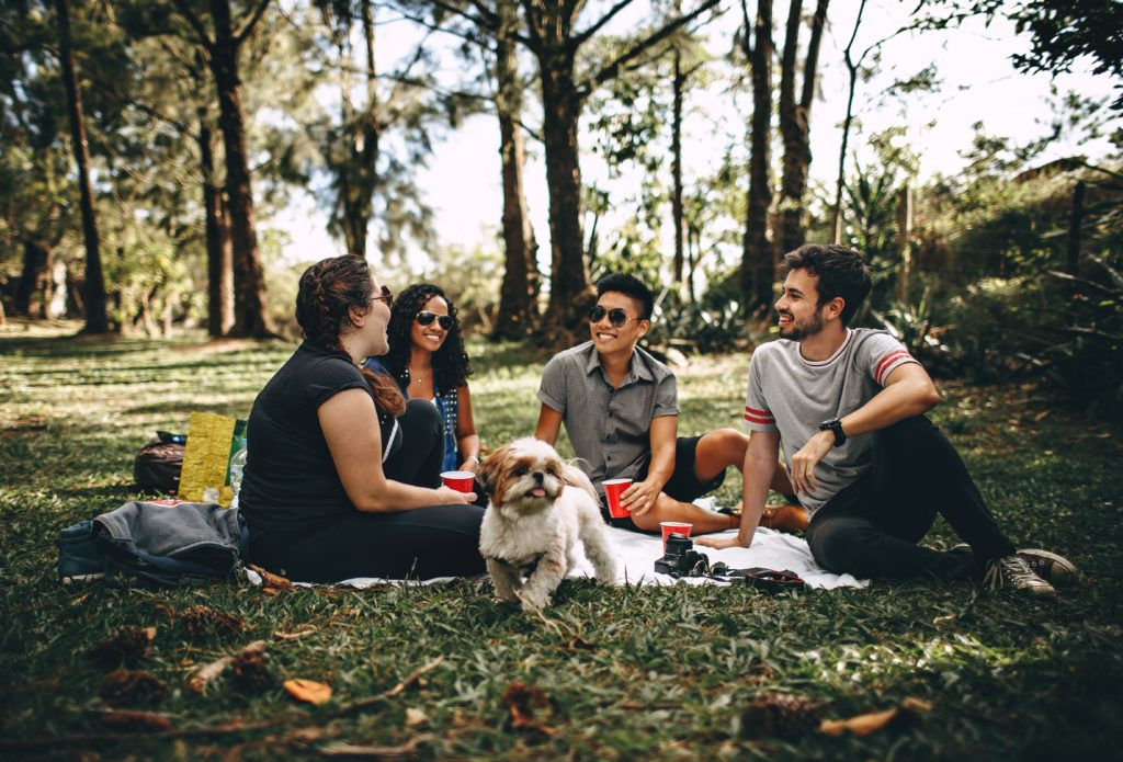 Adults picnic with dog
